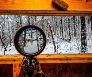 deer hunting calibre